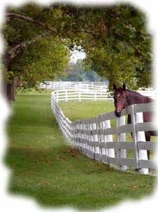 Insurance for horse farms
